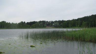 Photo of Arbi järves võib jälle supelda