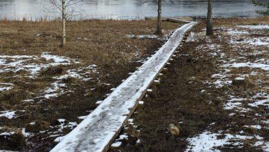 Photo of Arbi järve laululava poolses nurgas uus purre