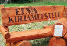 Photo of Elva Kirjanike pink: lugeja küsib, vallavalitsus vastab