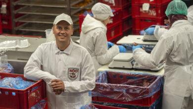 Photo of Nõo Lihatööstus: pensioniraha on jõudnud isegi toidupoodi