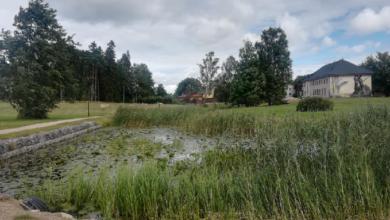 Photo of Oktoobrikuus tehakse Arbi ja Verevi järve ääres niitmis- ja puhastustöid